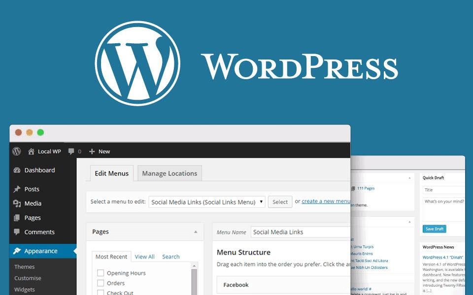 Digitale marketing termen uitgelegd, CMS, WordPress CMS